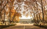 南京最美高校之南京體育學院