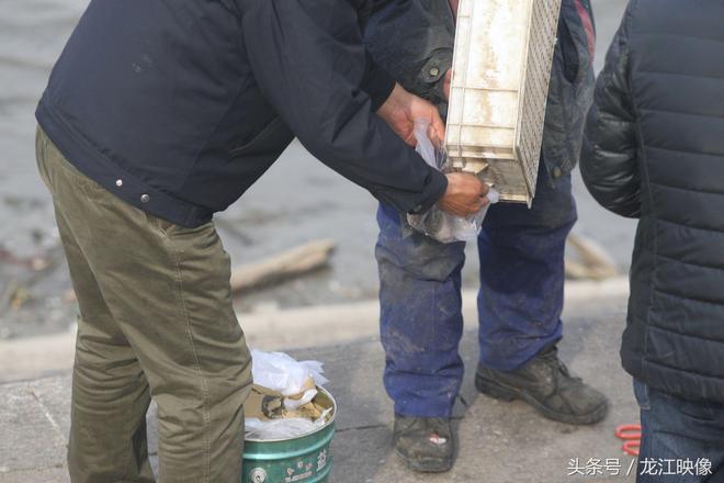 松花江邊常看到漁民賣魚,你知道他們賣的是江裡的還是家養的嗎?