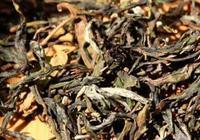 景邁山的普洱茶有什麼特點?