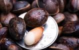 八大常吃堅果排行榜 誰是最營養的堅果