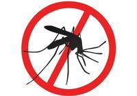 微型科幻小說|蚊子