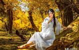 新疆喀什胡楊林、清澈靈動的湖水、林中美麗的白衣少女、美不勝收