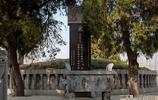 明朝奸臣為南宋岳飛先祖掃墓,發現眾多大鳥飛臨墓地,提議建祠