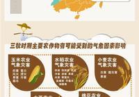 一張圖讀懂秋收秋種氣象服務