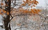 吉林三月,依舊冬日裡的純淨之美