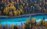 比加拿大豐富100倍的秋意,被譽為國內最美的秋天,你同意嗎?