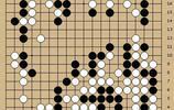 動圖棋譜-LG杯16強柯潔勝井山 羋昱廷負申真諝