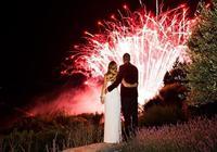 大衛-李和網球明星沃茲尼亞奇舉辦婚禮
