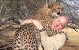 老人野外救了獵豹,最終獵豹卻對他緊追不捨!