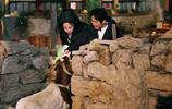 趙麗穎將做客蘑菇屋,單身狗要跟單身狗在一起