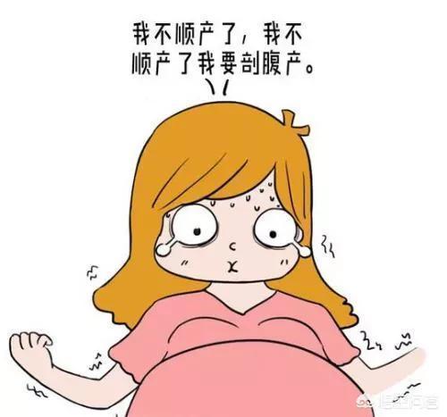 你認為順產和剖腹產哪個更痛?為什麼?