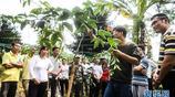 廣西欽州對貧困戶進行種植技能培訓 助力貧困群眾脫貧增收