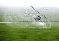 《農藥管理條例》修訂版發佈 農藥概念股迎來政策暖風吹拂
