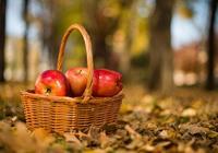 每天早上吃一個蘋果,堅持半個月以後,身體可以得到改善嗎?