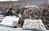 又是一年牡蠣肥 小夥開車不辭辛苦販賣牡蠣日銷千斤