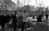 中國回族珍貴老照片