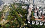 武漢,航拍漢口解放公園,城市中的一片生態綠肺