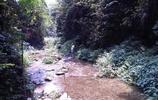 臨近小溪便得一山,大山裡尋找至清至純的水源