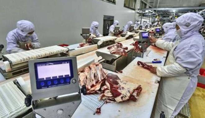康師傅泡麵每年賣出那麼多,到底得用多少頭牛?答案讓人合不攏嘴