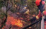 內蒙古大興安嶺原始林區突發2起森林火災
