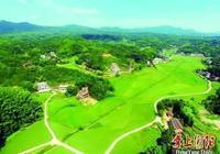 """衡陽:工業理念發展農業,推動""""農業大市""""邁向""""農業強市"""""""