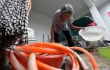 77歲老人在家帶孫子,兒子媳婦外出務工掙錢,家裡內務她全包了