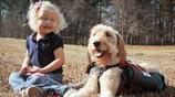 3歲女孩身患怪疾,結果被一隻狗幫了她的大忙
