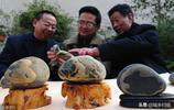 8年前撿到一塊奇石,有人800元求購不賣,你給看看如今值多少錢?