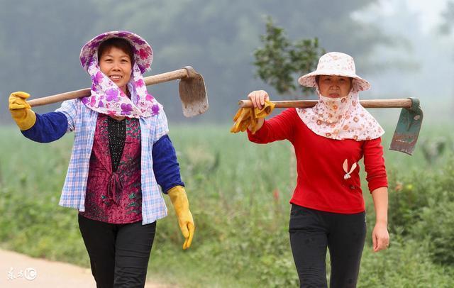 婦女出嫁在本村,在孃家分土地,而在婆家沒有分得,根據法律可以耕種自已的土地嗎?