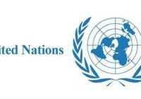 如果一個國家不加入聯合國,後果會怎麼樣?