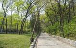 皇藏峪國家森林公園景色
