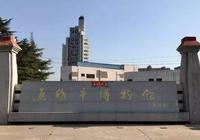 山陽瑰寶——焦作市出土文物精品展陶瓷