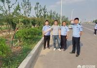 鄲城縣:為美化自家院子環境,盜竊道路綠化樹被拘留, 你怎麼看?