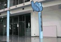 這個英國王室御用傘具品牌,造了把魔法雨傘
