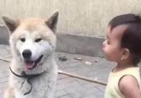 小主人很生氣的教訓小狗,結果下一秒就讓人笑壞,好聰明的小狗