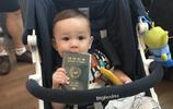 超人回來了中人氣寶寶威廉和粑粑的旅行,玩得開心喲