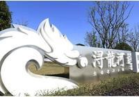 中國地標城策院特色小鎮批判之②:政策小鎮潯龍河的瞭望