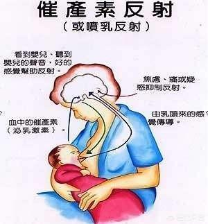 婆婆讓我每三小時抽一次奶,不管孩子吃不吃都要用吸奶器吸出來,這樣會不會奶不夠?