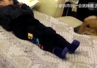 寶寶剛睡著,金毛竟一口咬住他的腳,孩子媽剛想動手反被暖到了
