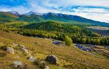 新疆白哈巴村田園風景,這是個著名的景區,被稱為西北第一村