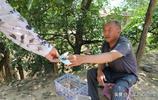 豫西66歲大叔地坑院裡養雞,8斤土雞蛋他賣了50塊,大家覺得貴不貴