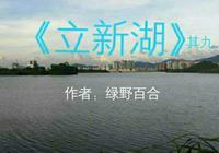 原創綠野百合 立新湖(九)