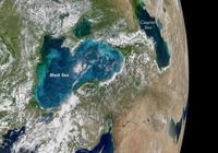 衛星圖片中黑海里的藍綠色是什麼?