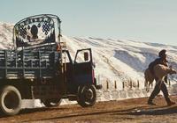《撞死了一隻羊》:有著《東邪西毒》氣質的藏區文藝電影