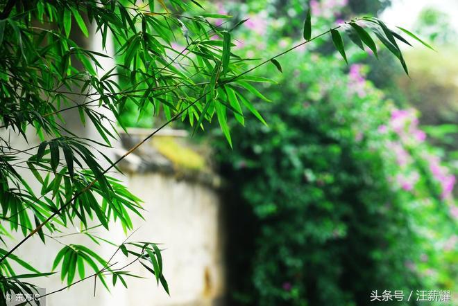 「四川內江」一家族花600多年建的寨子,曾獨霸一方,如今可惜了