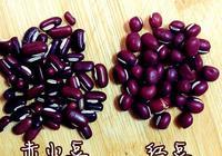 紅豆薏米是袪溼,但這裡的紅豆並非你認識的紅豆,別再傻傻分不清