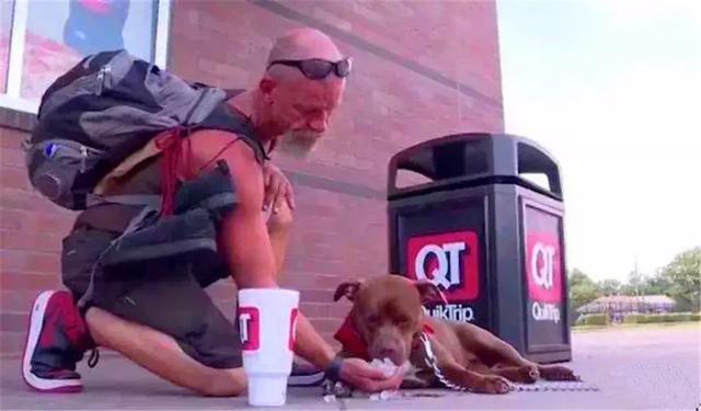 忠犬多年前被美國警察相救,主人淪落為流浪漢後,狗狗堅持相伴!