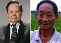 科學家楊振寧和袁隆平相比,誰的貢獻最大?