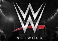 WWE全稱世界摔角娛樂,這真的是娛樂嗎?