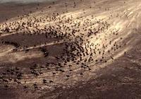 10部印象深刻的戰爭片